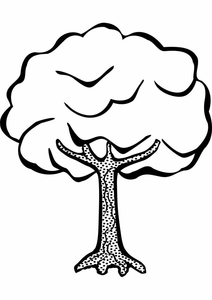 tree coloring page full