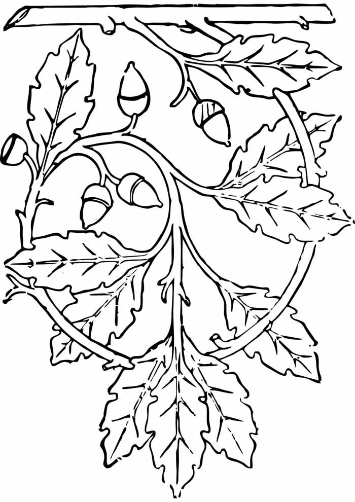 tree coloring page hanging