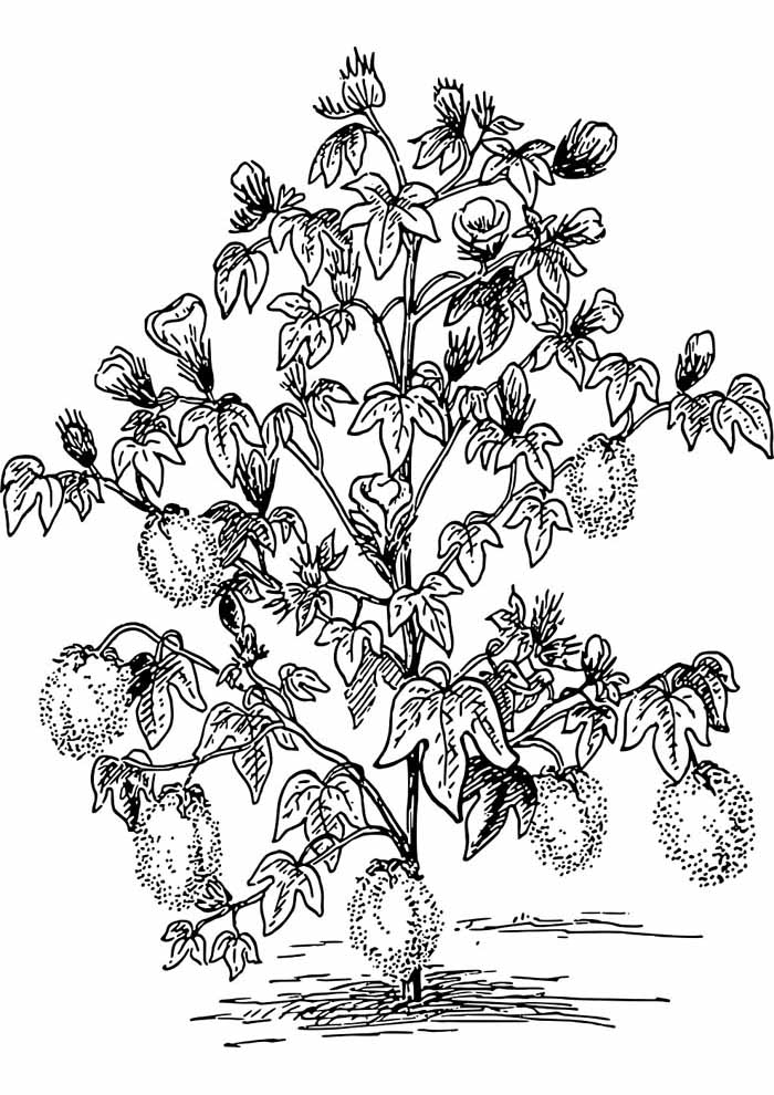 tree coloring page leaves and flowers