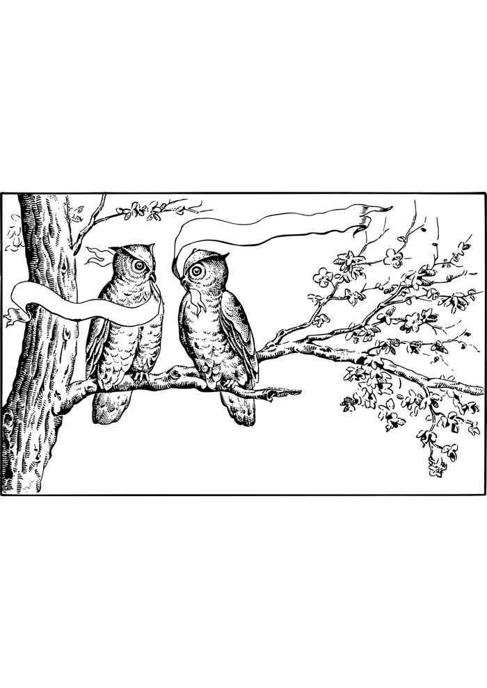 tree coloring page owl
