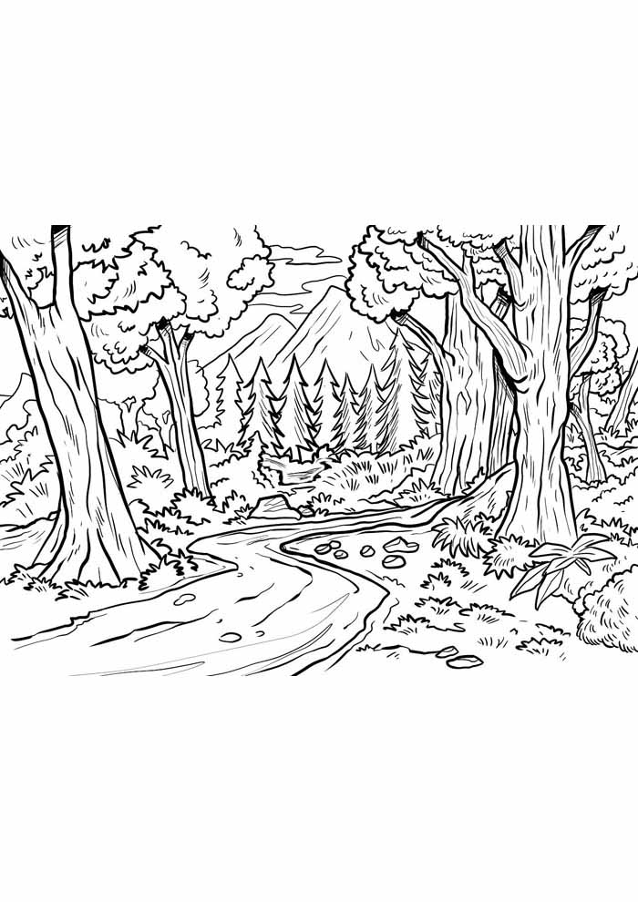 tree coloring page pine forest