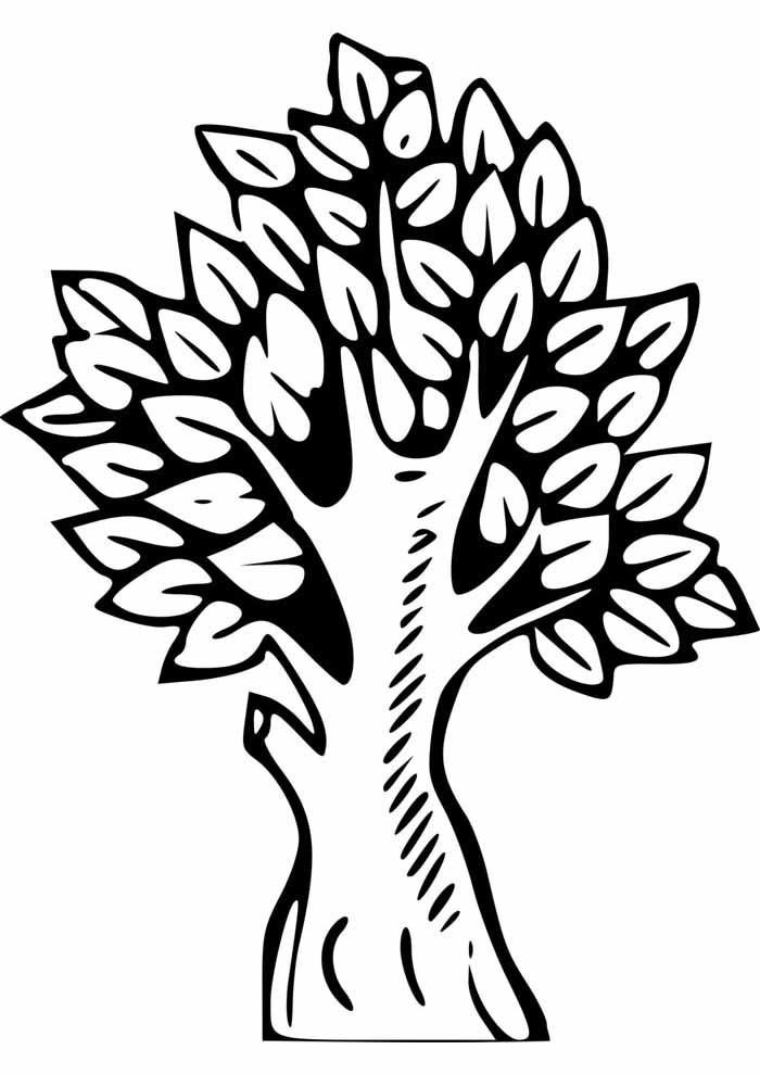 tree coloring page trunk and leaves