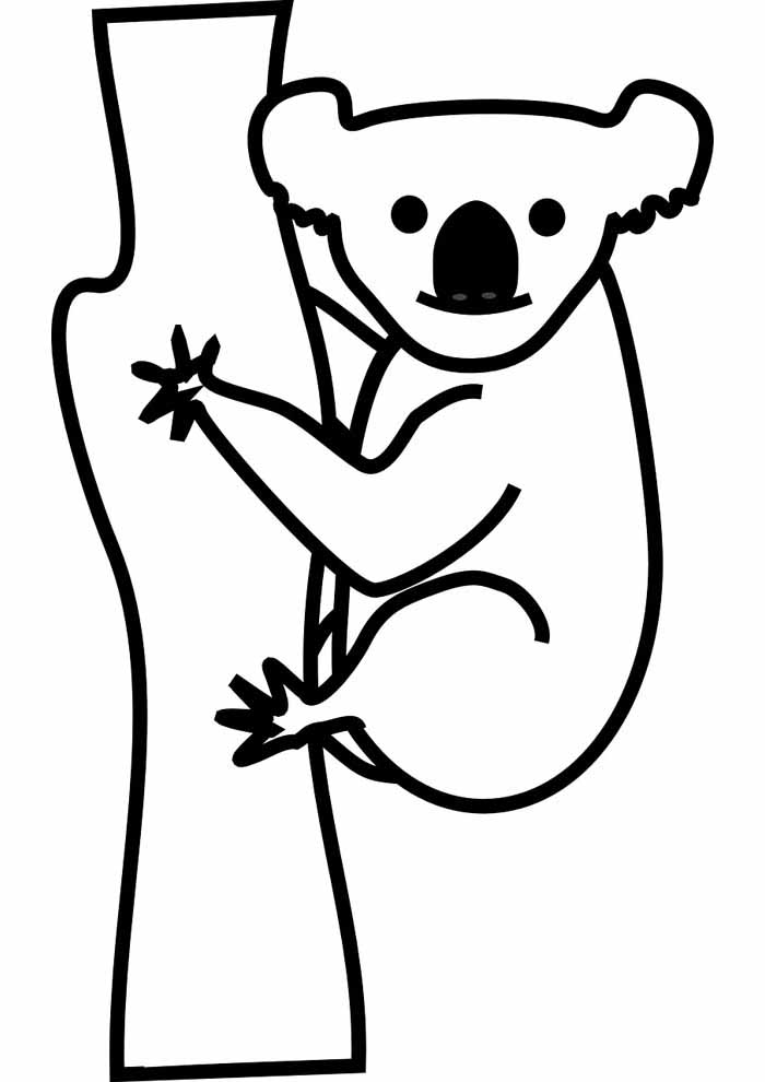tree coloring page with koala