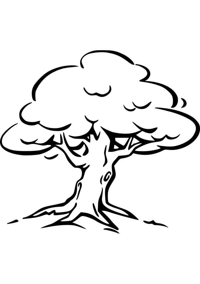 tree coloring page with roots