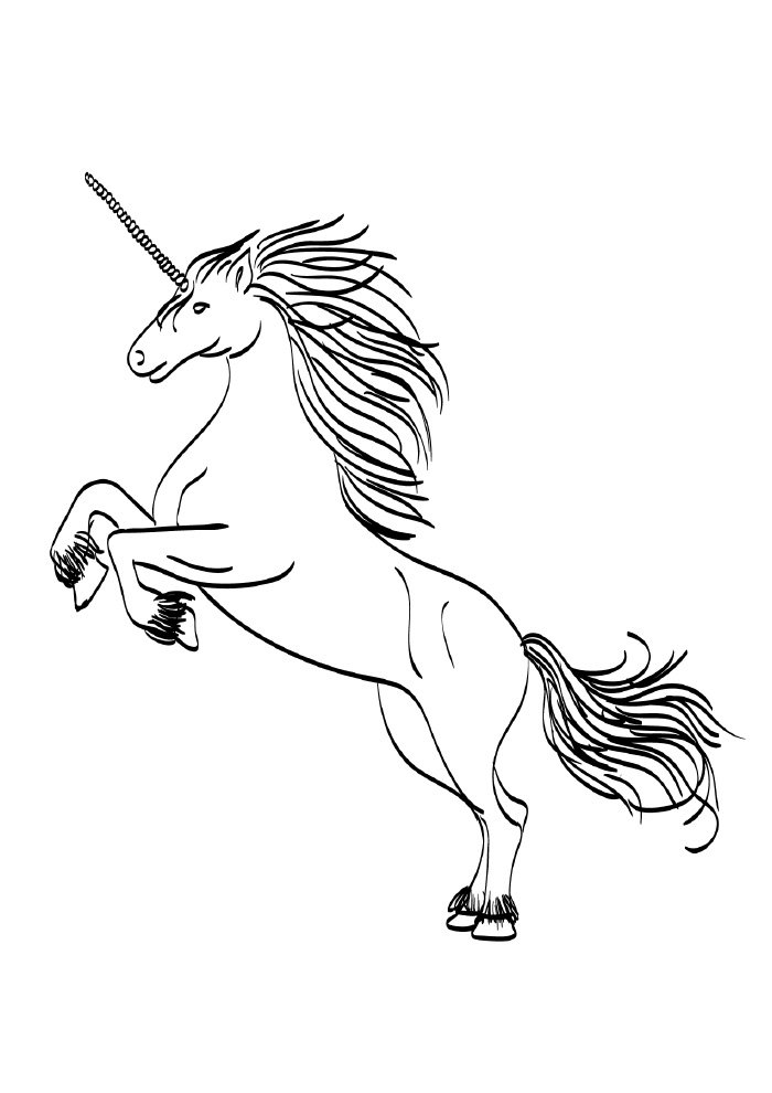 unicorn coloring page adult