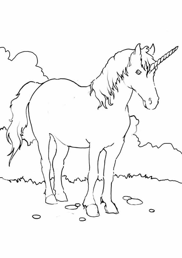 unicorn coloring page big male