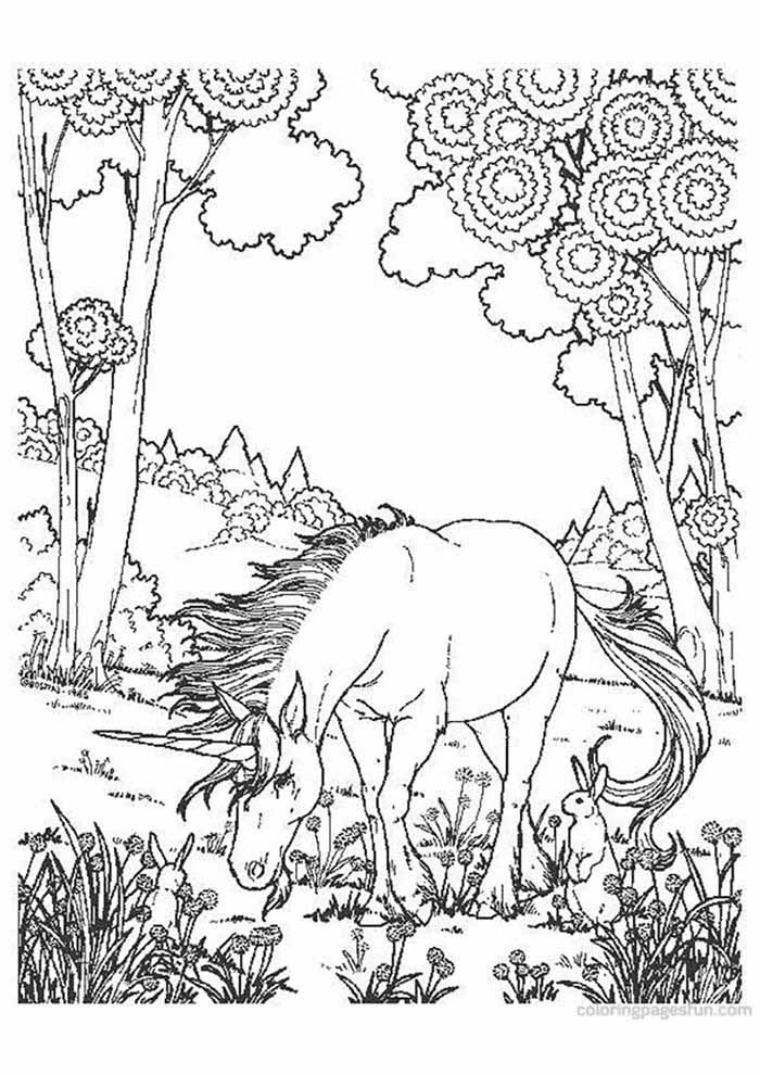 unicorn coloring page in the forest