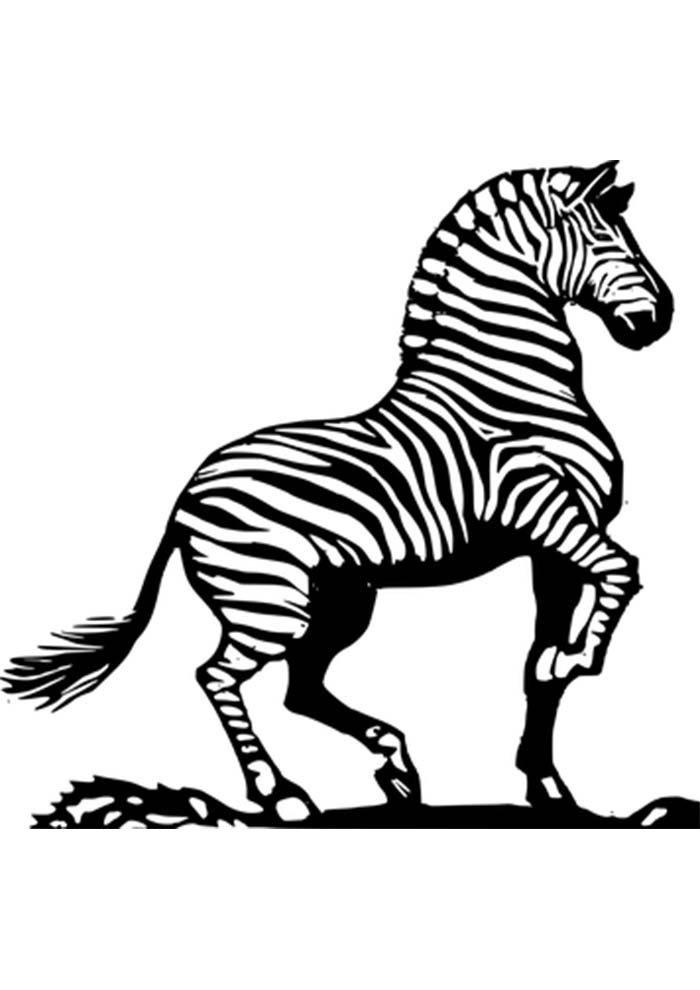zebra printable sheet