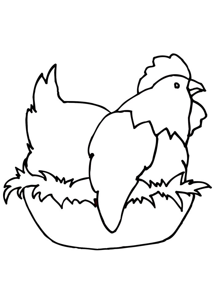 Chicken coloring page 20