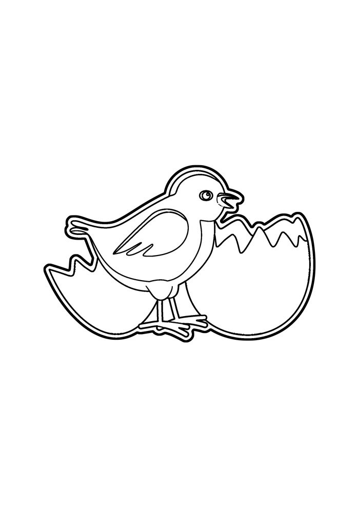 Chicken coloring page 31