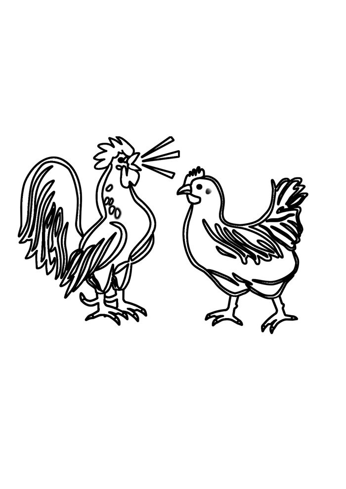 Chicken coloring page 35