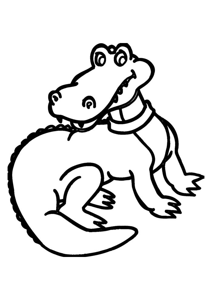 alligator coloring page 11