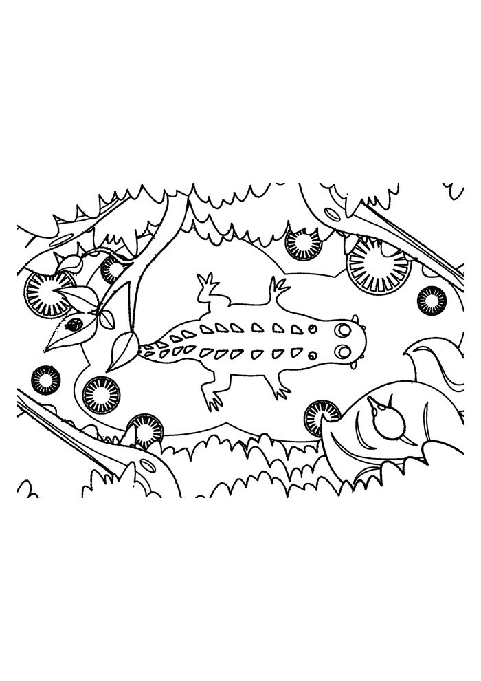 alligator coloring page 16