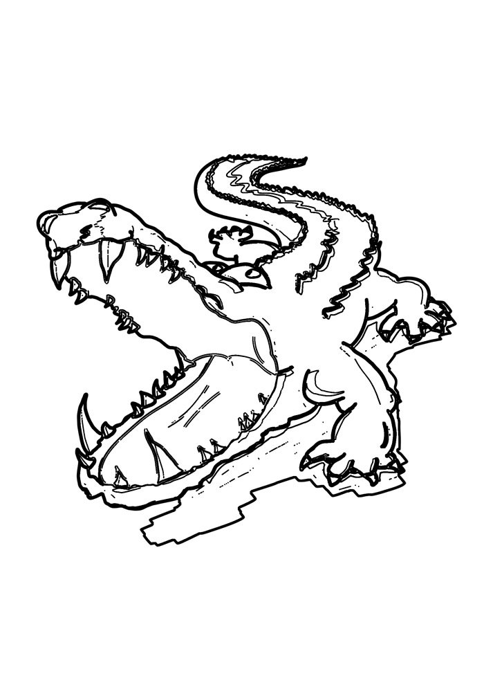 alligator coloring page 32