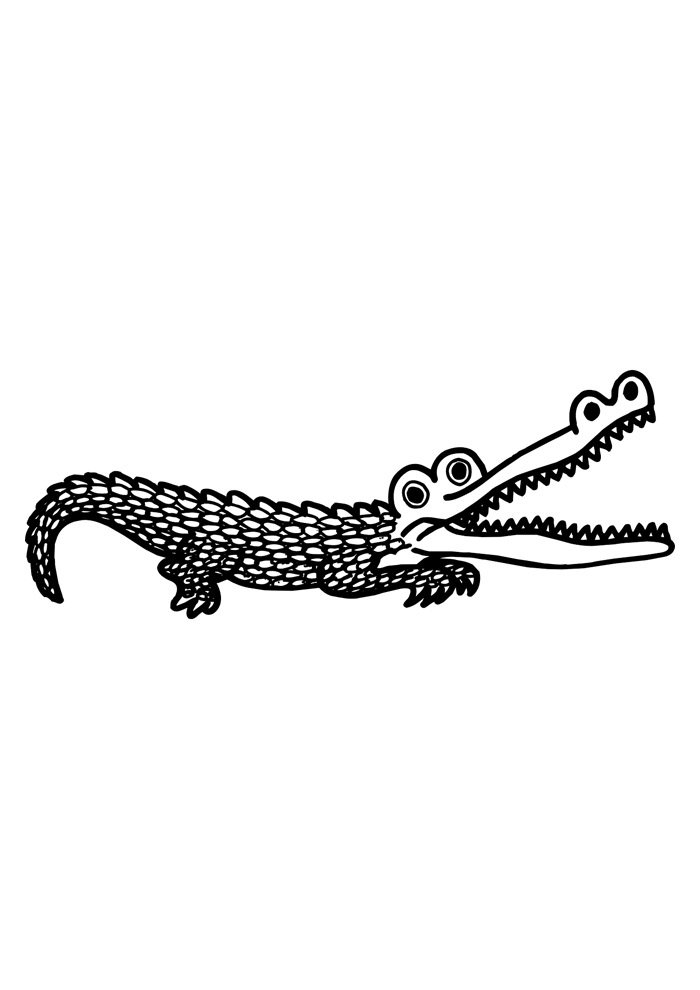 alligator coloring page 35