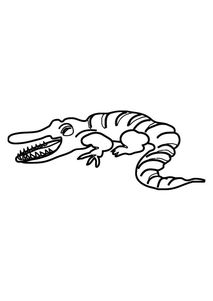 alligator coloring page 36