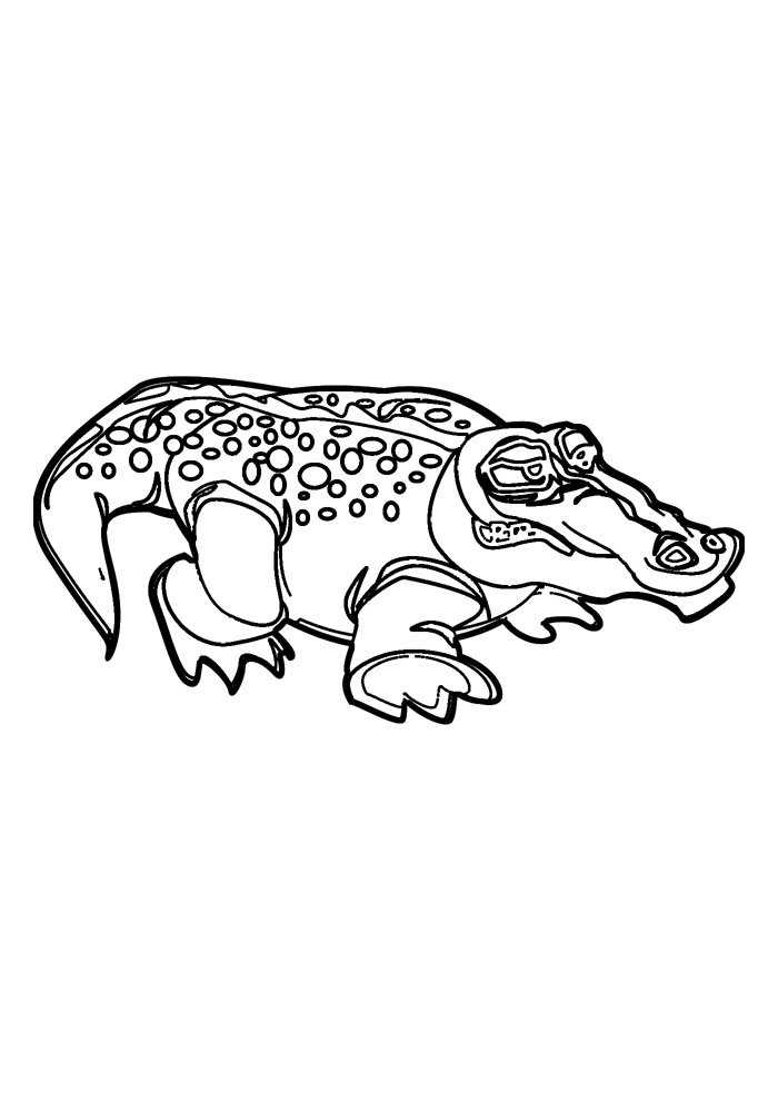 alligator coloring page 7