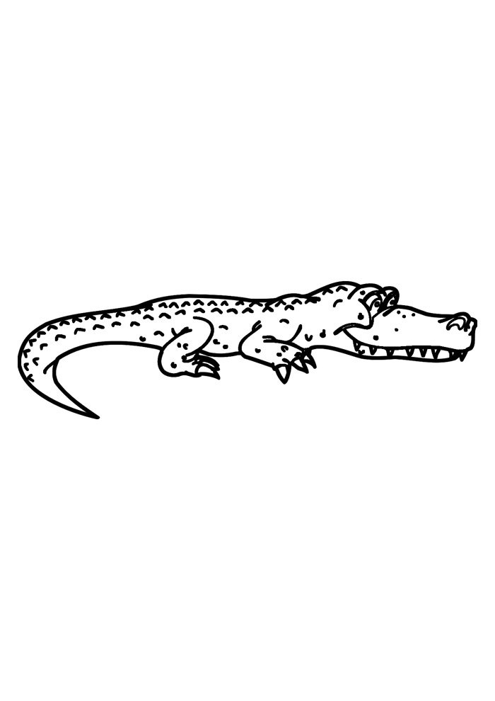 alligator coloring page 8