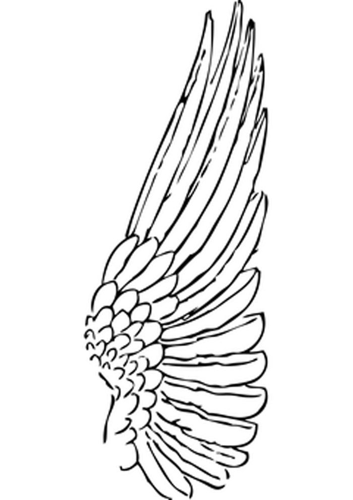 angel coloring page long wings