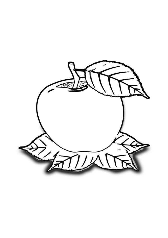 apple coloring page 24