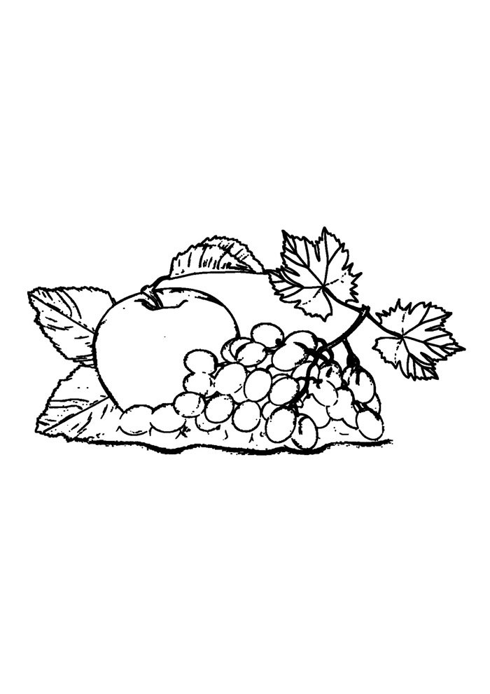 apple coloring page 33