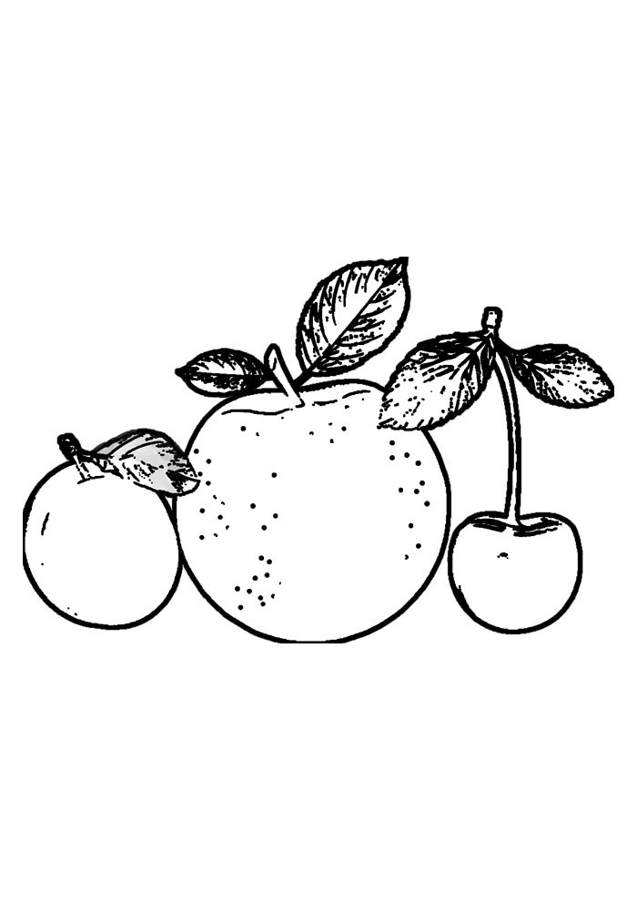 apple coloring page 35