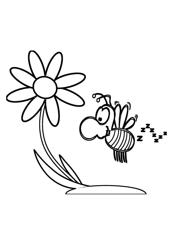 bee coloring page 29