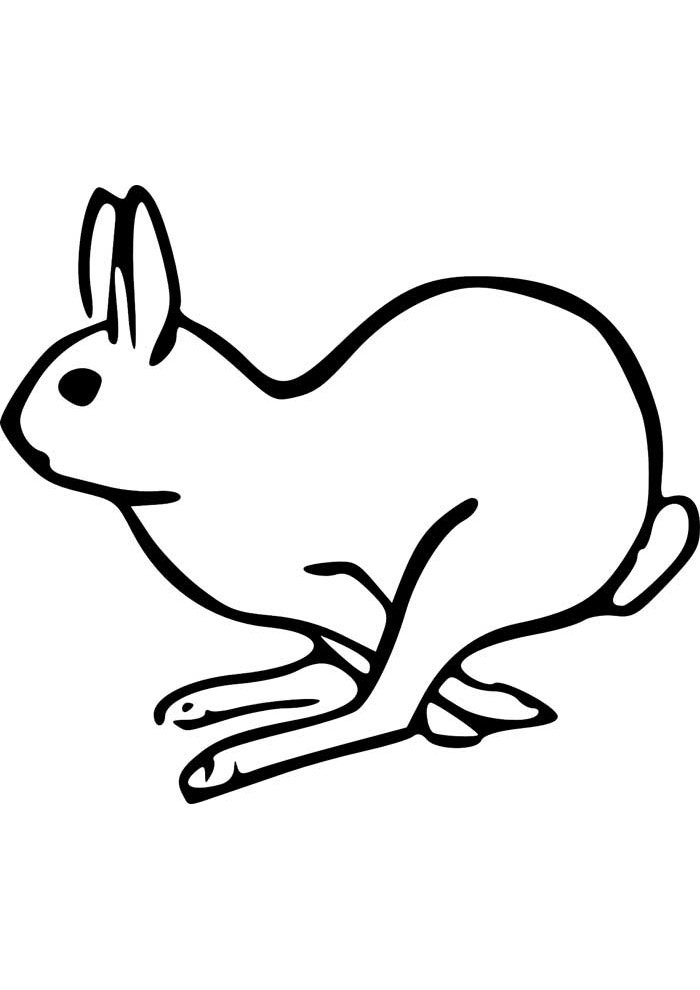bunny coloring page 23