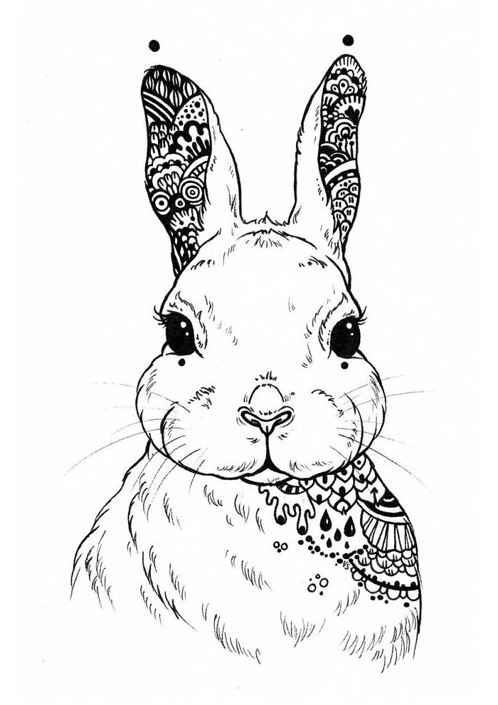 bunny coloring page 40