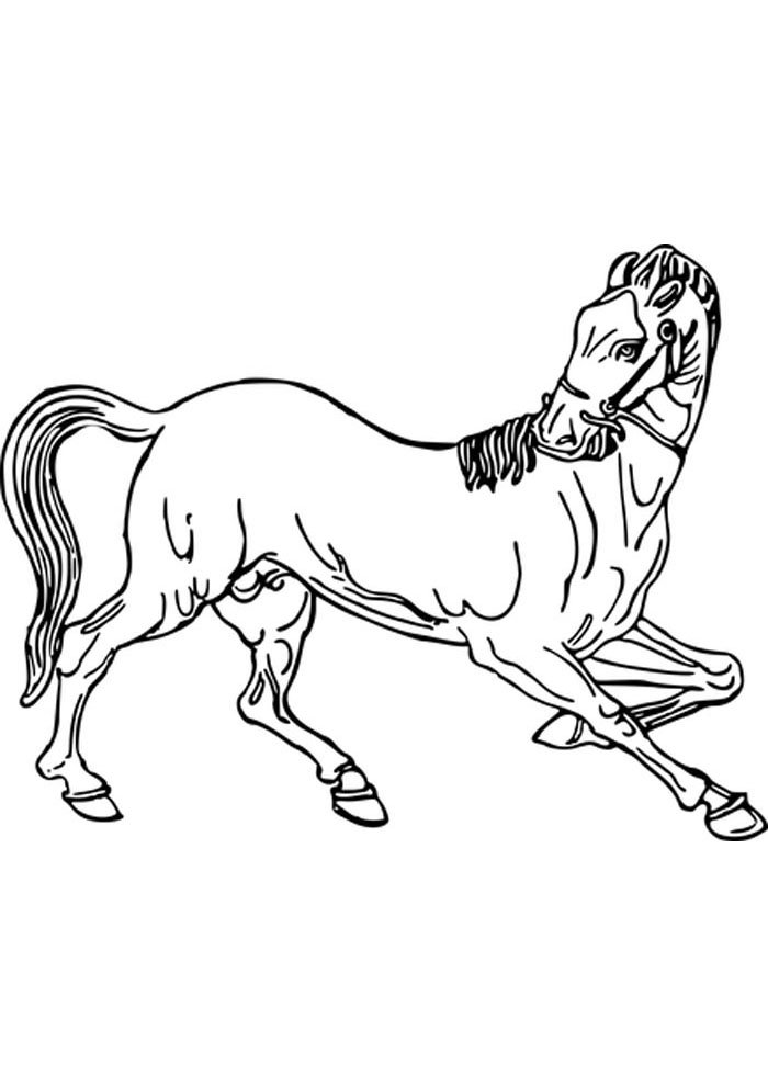 caballo para colorear