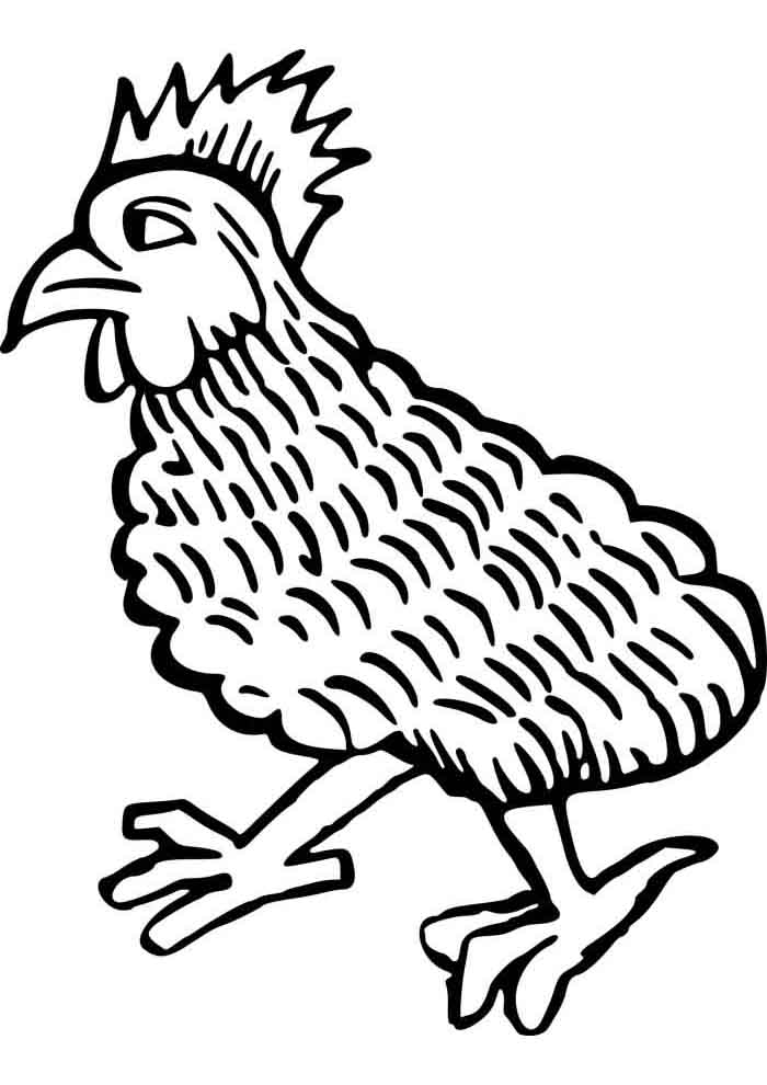 chicken coloring page 9