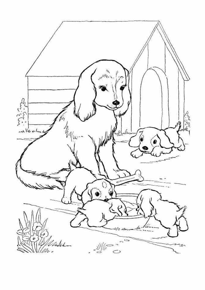 coloriage chien 25