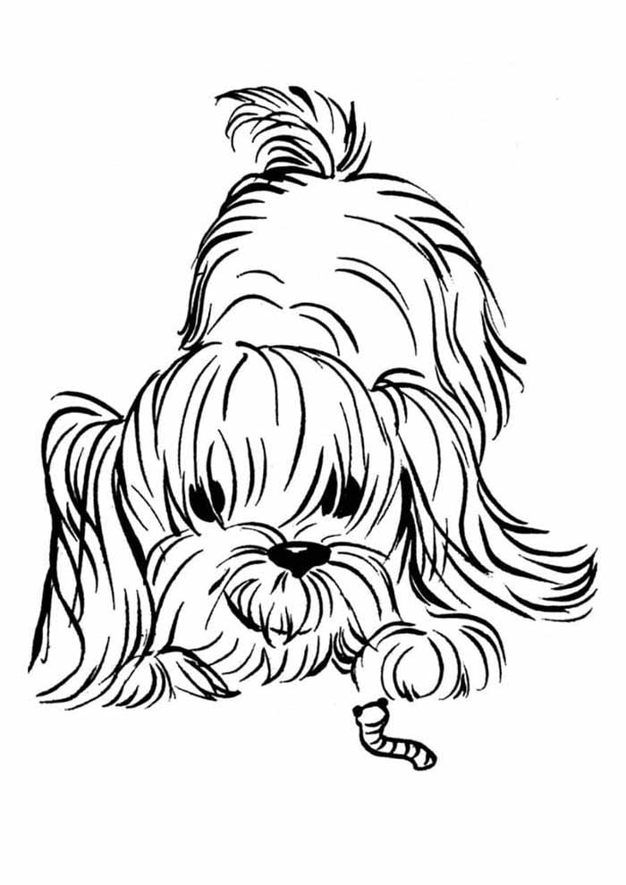 coloriage chien 38