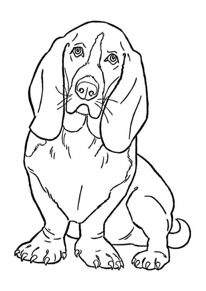 coloriage chien 43