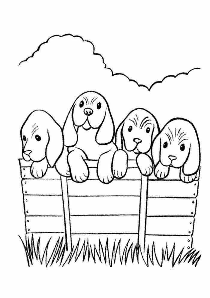 coloriage chien 61
