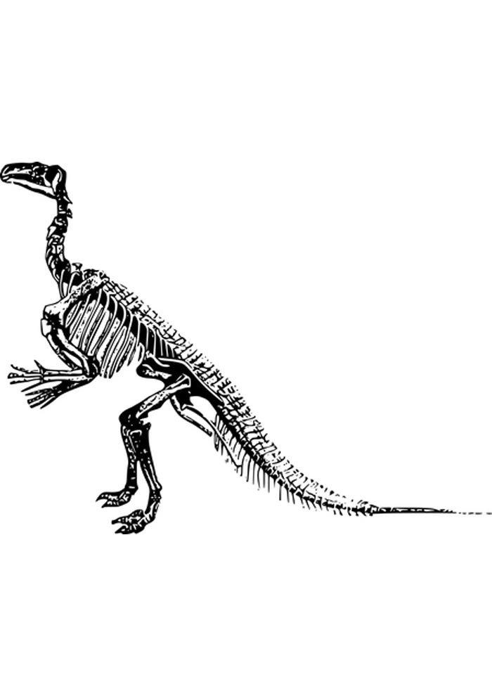coloriage dinosaure 16