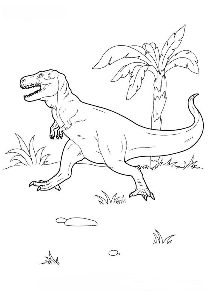 coloriage dinosaure 55