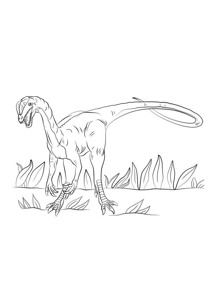 coloriage dinosaure 61