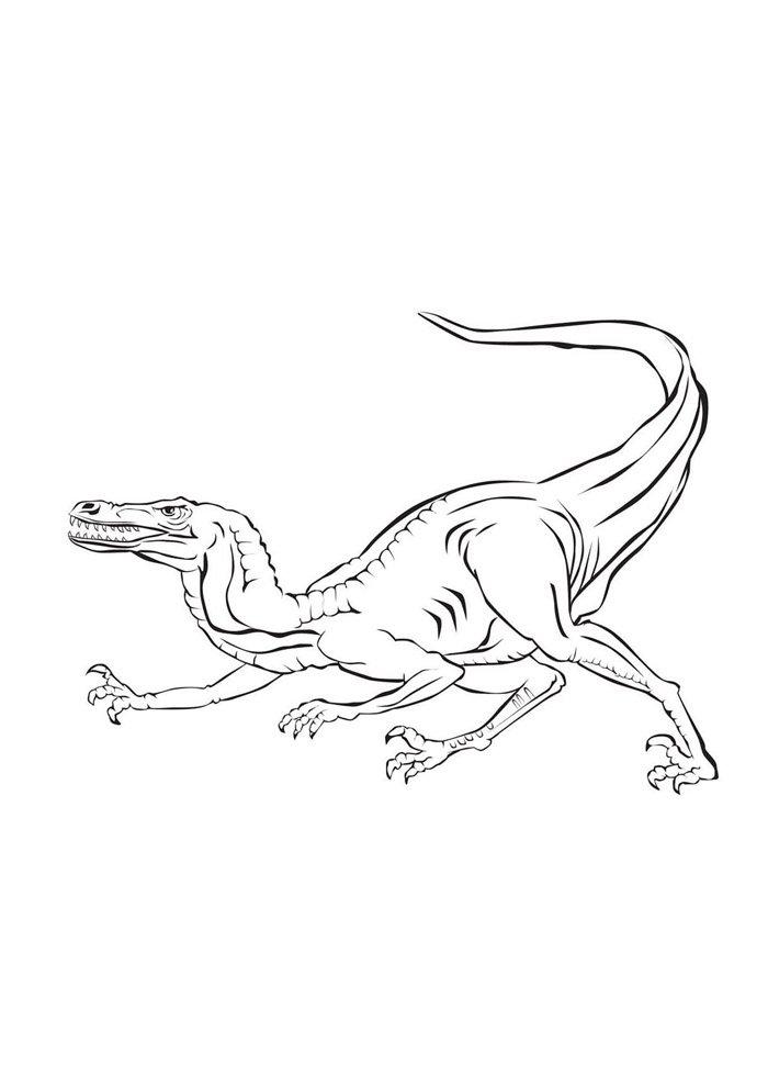 coloriage dinosaure 66