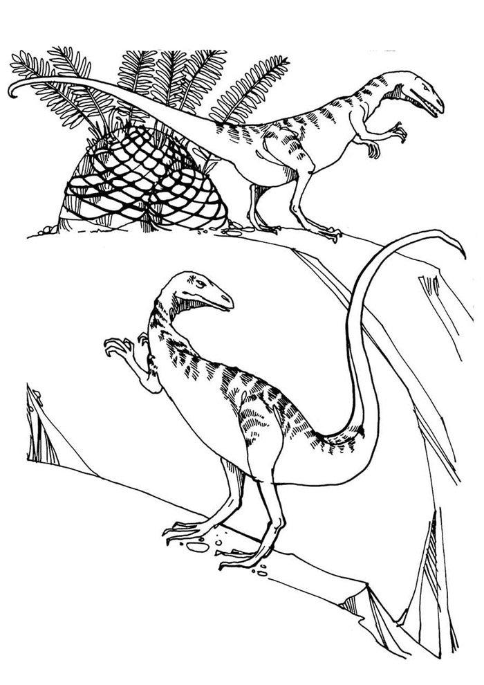 coloriage dinosaure 67