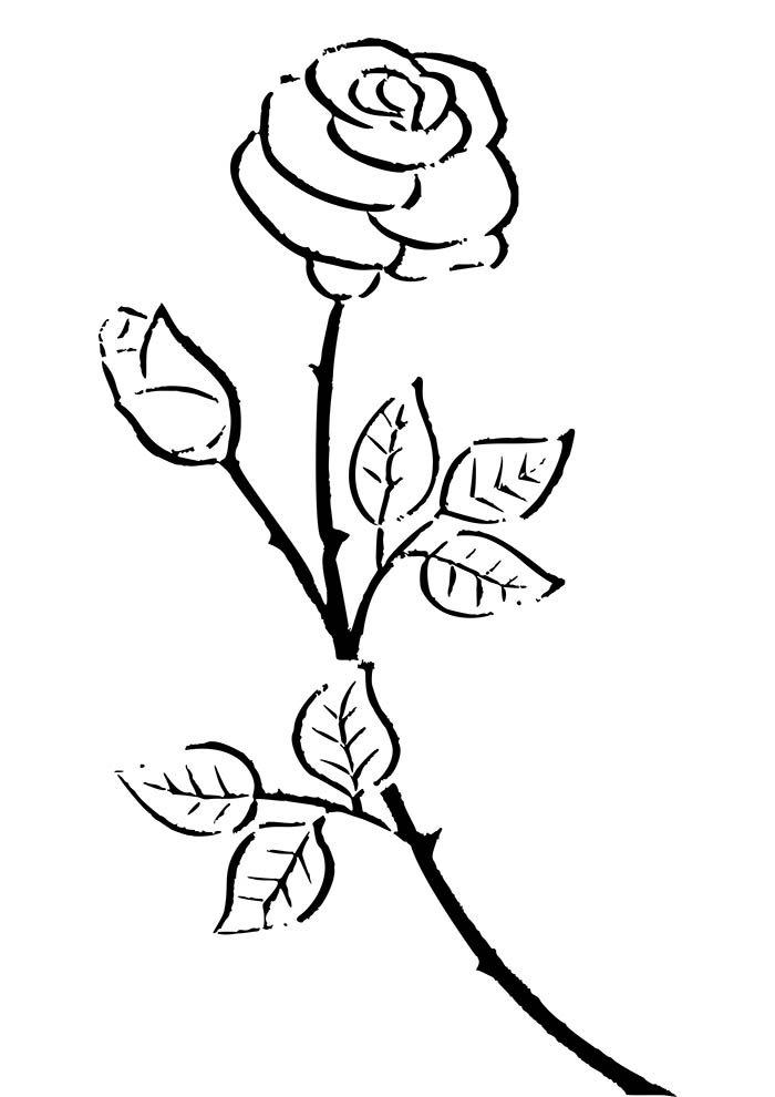 coloriage fleur 25