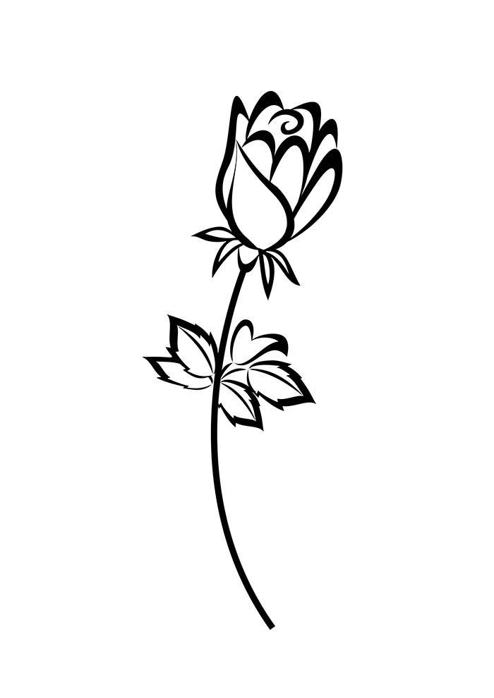 coloriage fleur 30