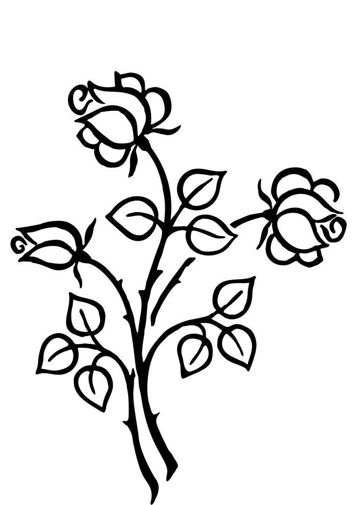 coloriage fleur 32