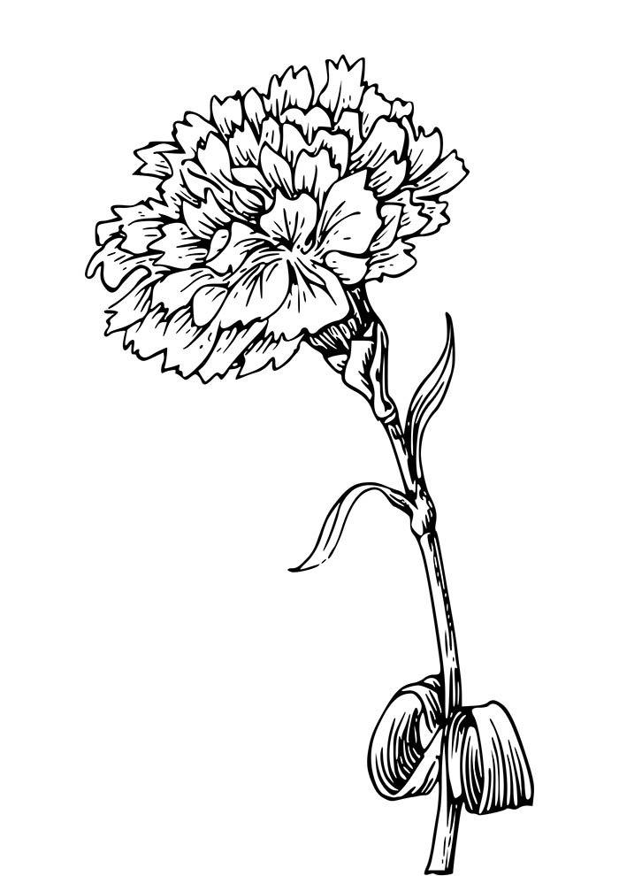coloriage fleur 34