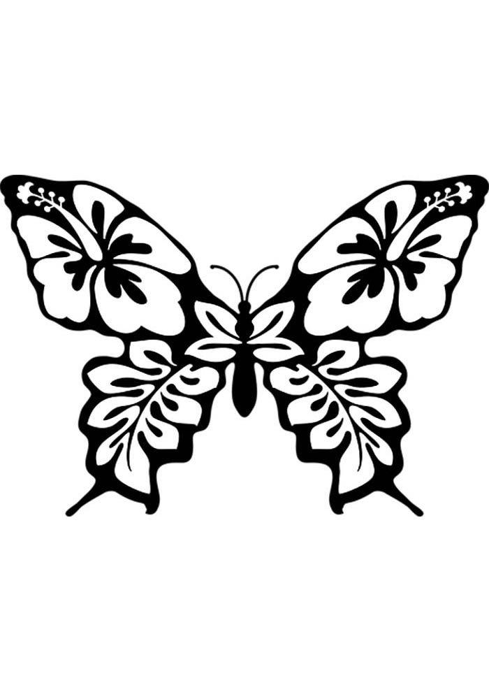 coloriage papillon 23