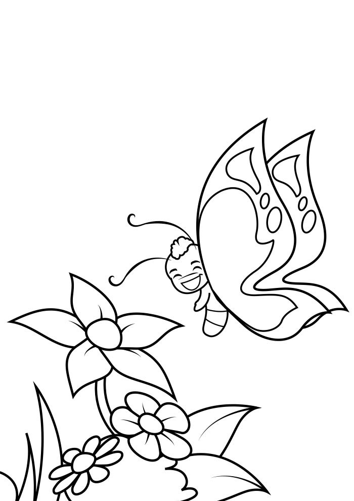 coloriage papillon 26