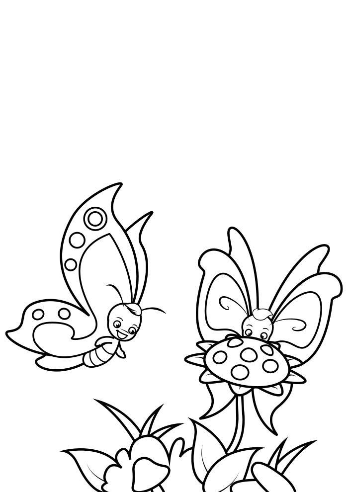 coloriage papillon 32