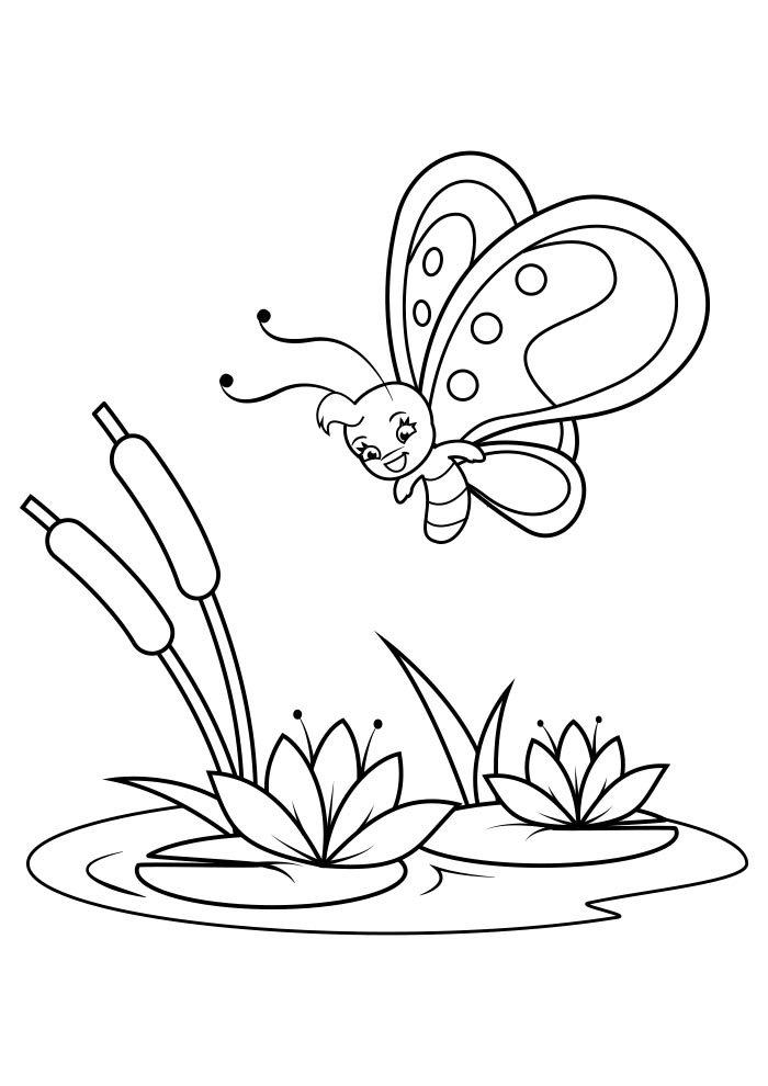 coloriage papillon 33