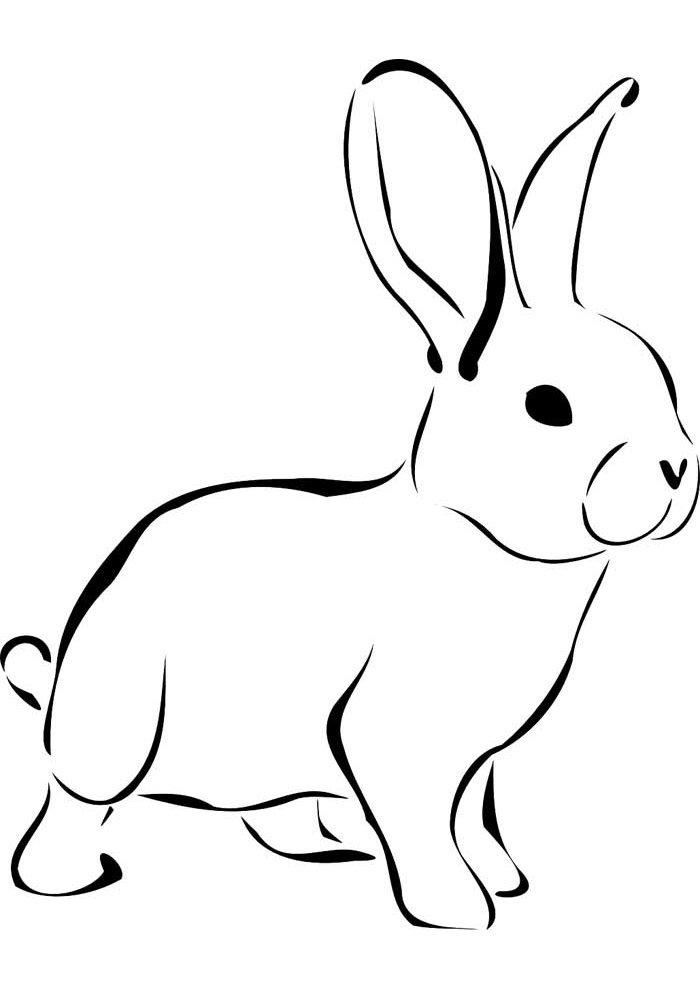 conejo para colorear 11 1