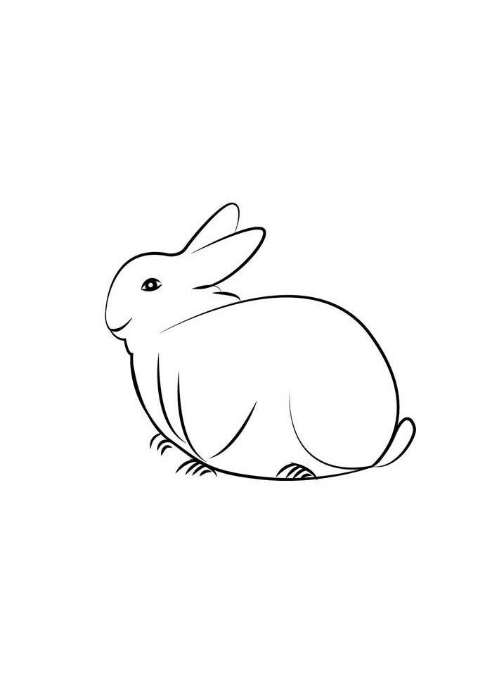 conejo para colorear 14 1